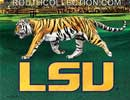 LSU Tiger on the Prowl