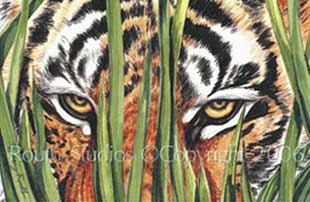 Peering Tiger Eyes Watercolor