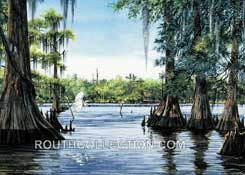 Lake Verret Cypress Trees and Egret Watercolor